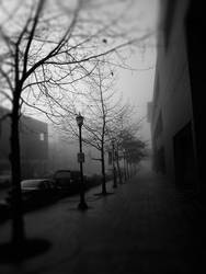 freezing fog, Seattle by gregpaul