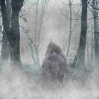 Ghost Horse by AmandaMarie89