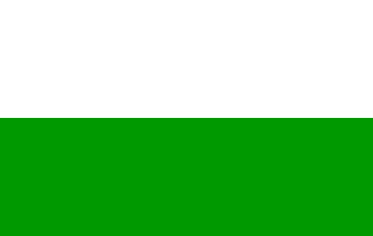 Flag of The Kingdom of Saxony by LtAngemon