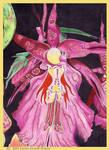 Orchaydia's Corsett Panel