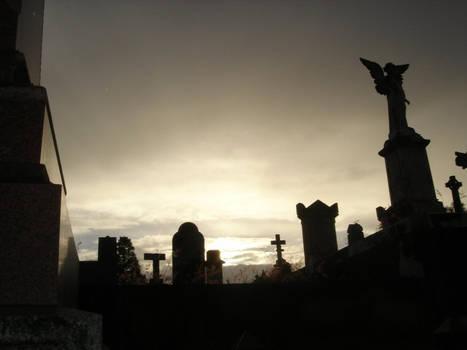Toowong Cemetery 1