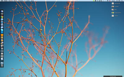 My Desktop 03.27.11 by victoranselme