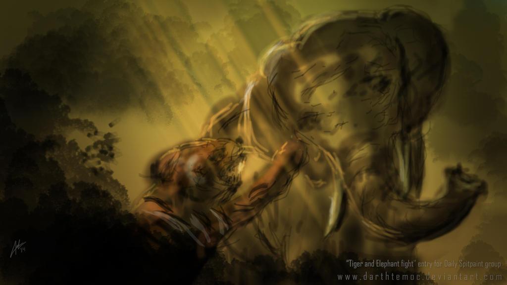 Elephant tiger fight