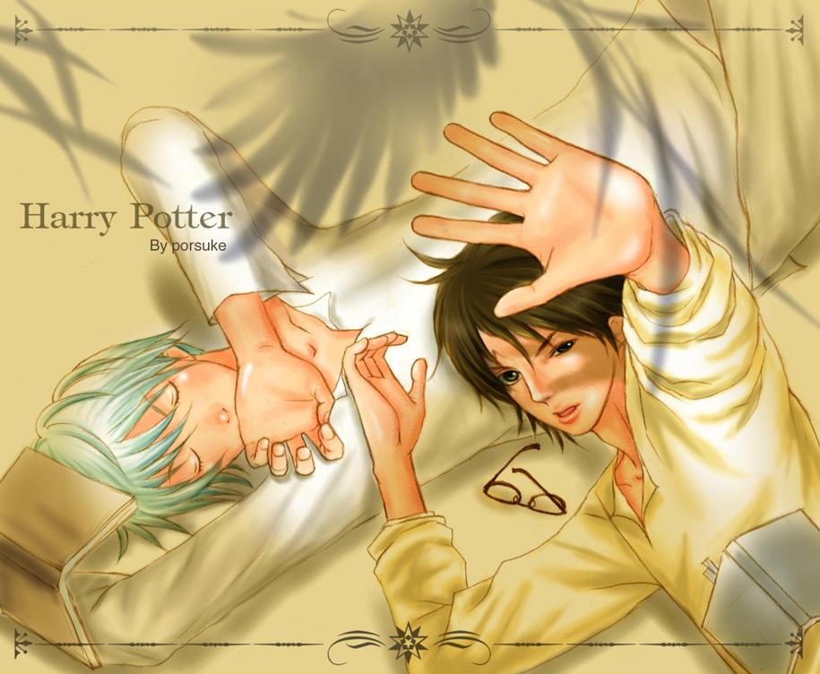 http://fc03.deviantart.net/fs5/i/2004/305/4/2/Harry_Draco_phoenix_by_porsuke66.jpg