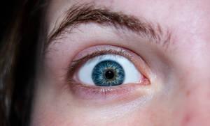 2009-11-01 Eyes 018
