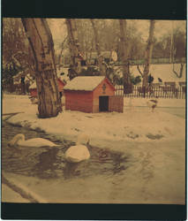 Lubitel 2 - Kugulu Park - Ankara