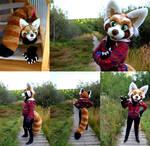 Red Panda Fursuit (for sale!)