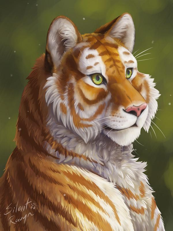 Tabby Tiger Portrait by SilentRavyn
