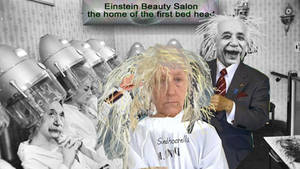 Einstein beauty salon the home of the bedhead