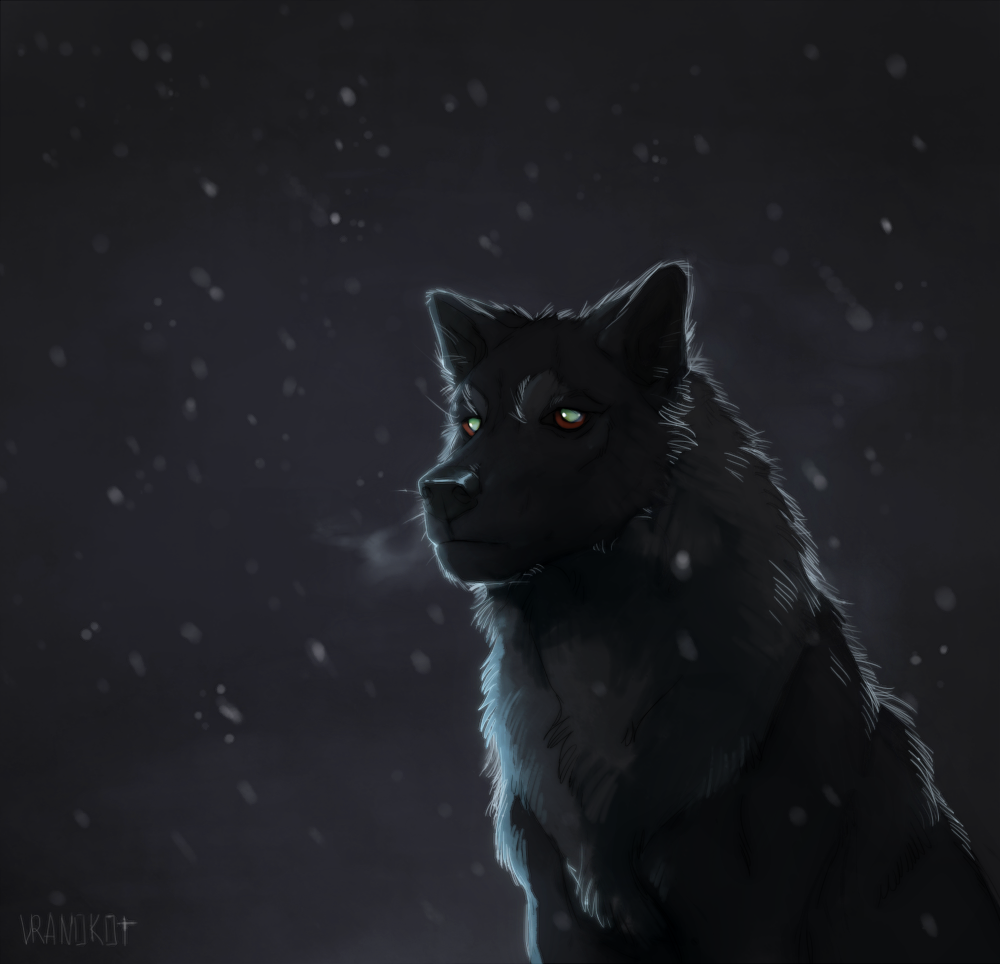 see your eyes through the night by Vranokot
