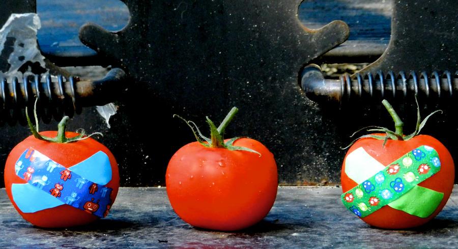 Fight Club Tomatoes by machete-genie