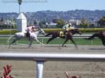 Golden Gate Fields - Racers 01