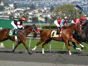 Golden Gate Fields - Racers 47