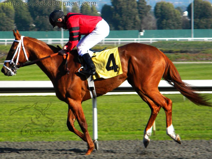 Golden Gate Fields- Racers 105 by Nyaorestock