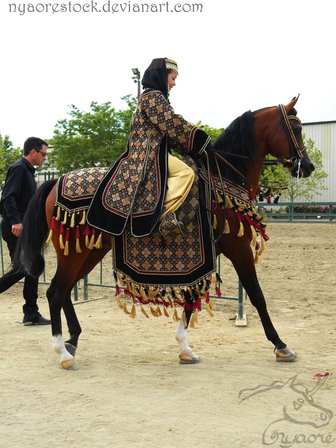 Rancho 2011 - Na. Costume 04 by Nyaorestock