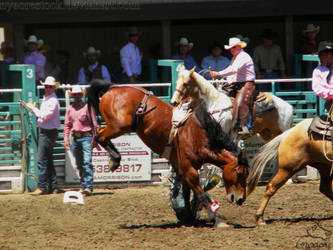 Rowell Ranch Rodeo - 8 by Nyaorestock