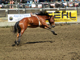 Rowell Ranch Rodeo - 9 by Nyaorestock