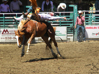 Rowell Ranch Rodeo - 10 by Nyaorestock