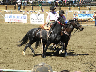 Rowell Ranch Rodeo - 20 by Nyaorestock