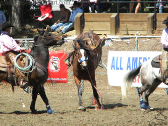 Rowell Ranch Rodeo - 22 by Nyaorestock