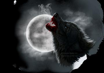 Howl by Sidonie