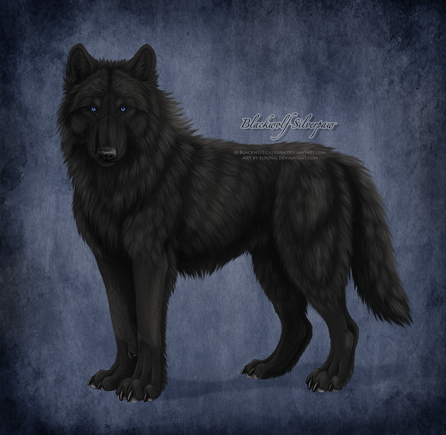 Blackwolf Silverpaw by Sidonie