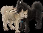 Genesis and Vivien