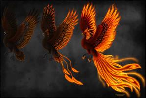 Phoenix Transformations by Sidonie