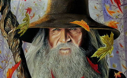 Gandalf by AlessandraBuffone