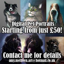 Digital Pet Portrait Commissions Advert