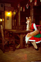 Horo - Spice and Wolf 1 by Chrome-sensei