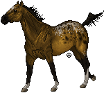 pixel horse - bay appaloosa by AguaZero