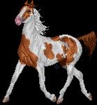 pixel horse - Dakota by AguaZero