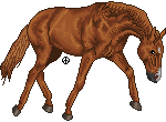 pixel horse - warmblood jog by AguaZero