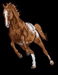 pixel horse - renegade by AguaZero