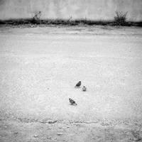 alone - 5