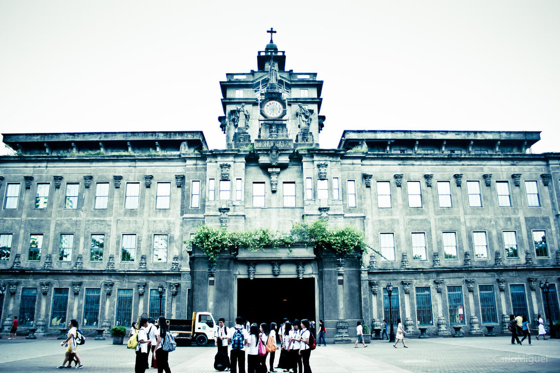 why did you choose university of santo tomas
