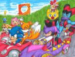 Sonic Team Kart