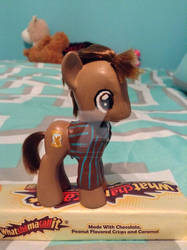 Tenth Doctor Pony