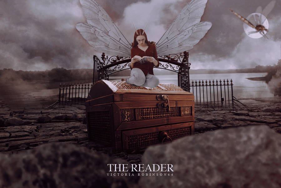 THE READER by viarobinson