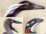 Troodontidae by Polihierax