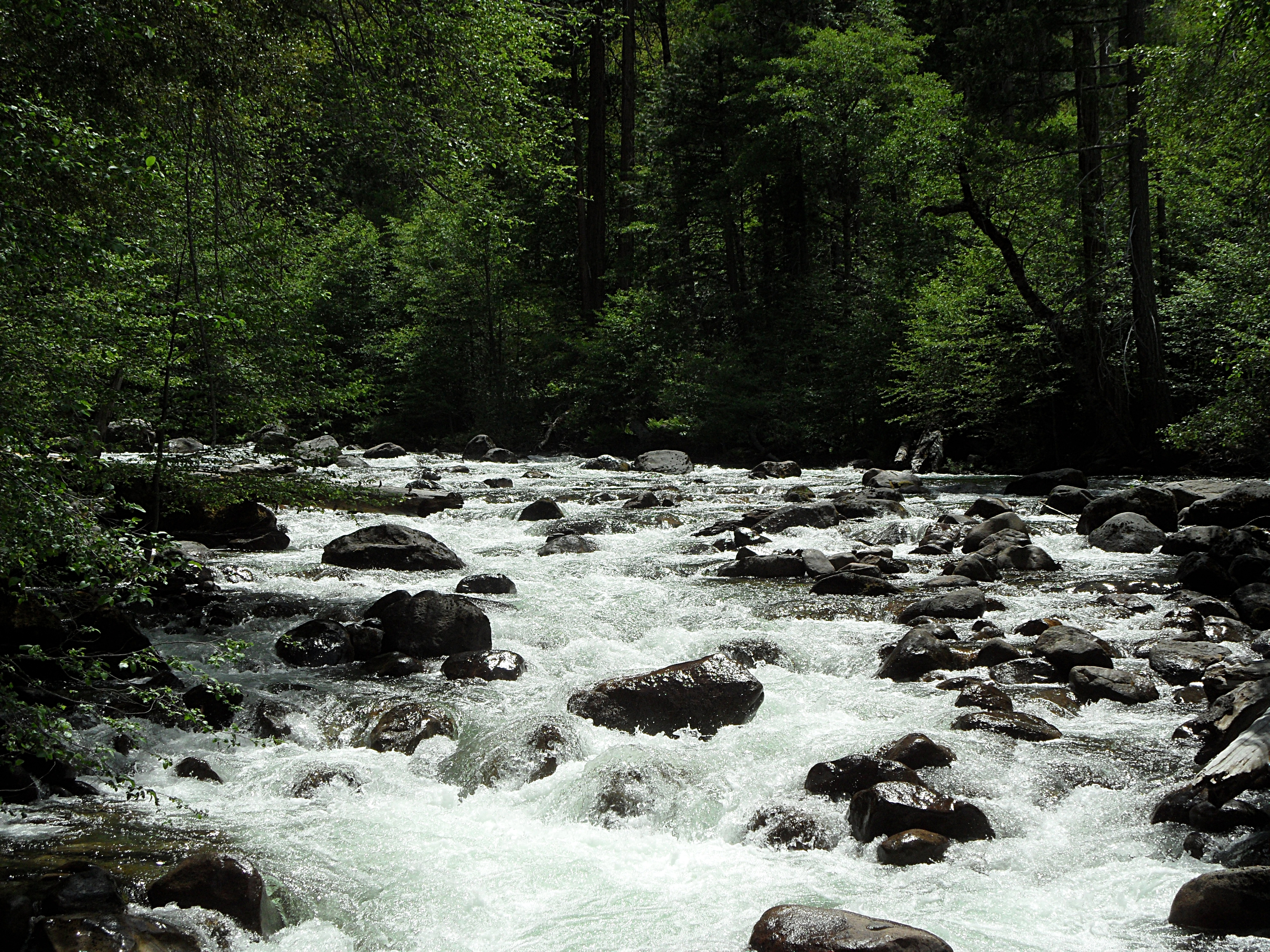 River (126)