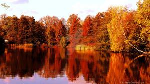 Autumn-2560x1440