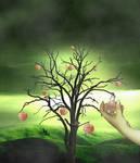 Baum-der-erkenntnis