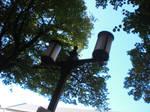 Lantern 9