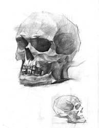 Skull by Vino-grad