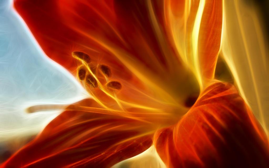 Winter 2015 fractal flower by Henrikson