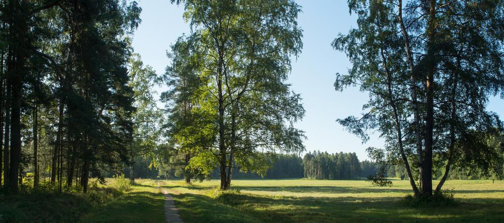 Summer 2015 13 by Henrikson