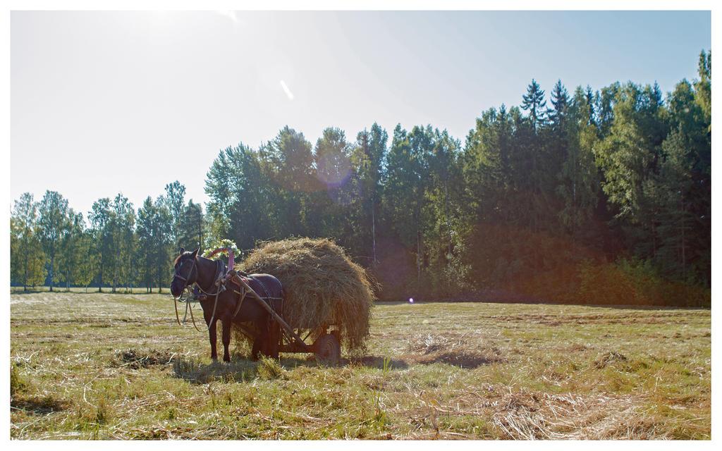 Summer 2015 15 by Henrikson