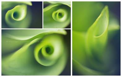 Tourbillon vert copie